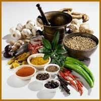 Herbal Extract Medicines