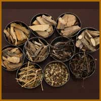 Ayurvedic Herbal Extract