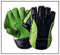 Wicket Keeping Glove
