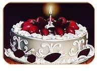 Pineapple Cake(1 Kg)