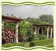 Bandhavgarh Wildlife Resorts