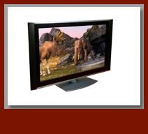 Plasma Screens & LCD T.V