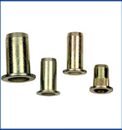 Blind Rivets Nuts