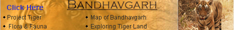 Move to Bandhavgarh