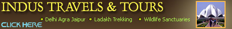 Move to Indus Travels & Tours